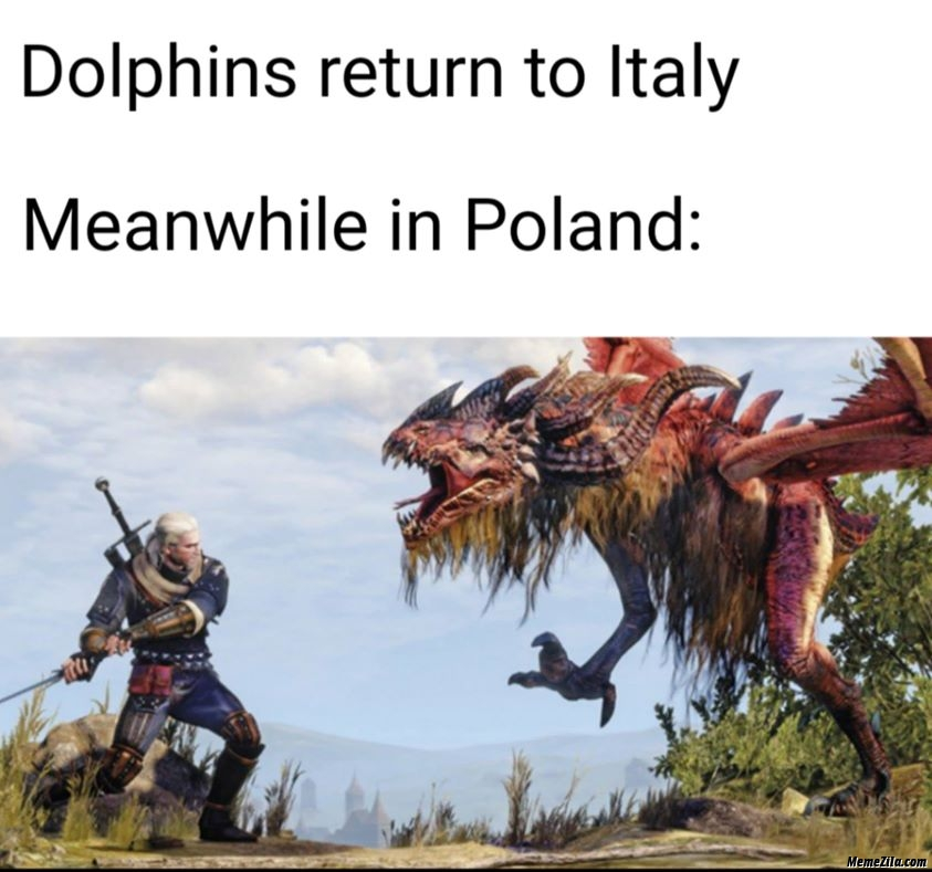 Dolphins return to Italy Meanwhile in Poland meme