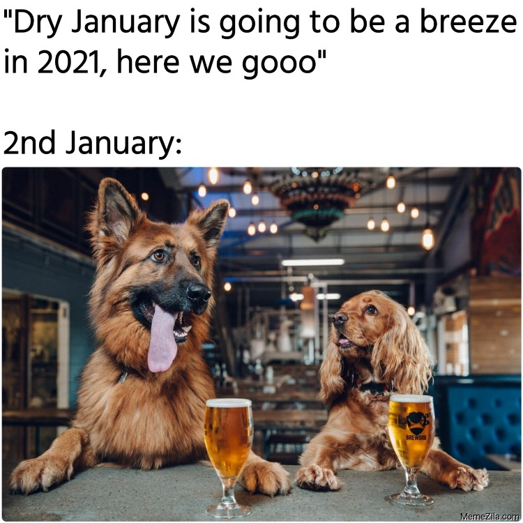 Dry January is going to be a breeze in 2021 here we go 2nd January meme