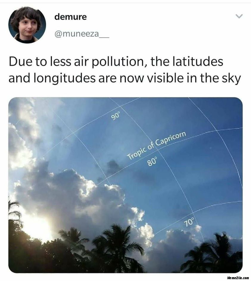 Due to less air pollution the latitudes and longitudes are now visible in the sky meme