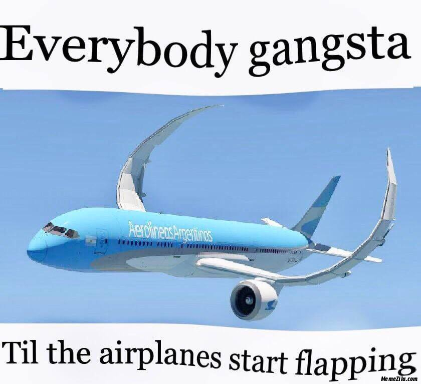 Everybody gangsta Till in the airplanes start flapping meme