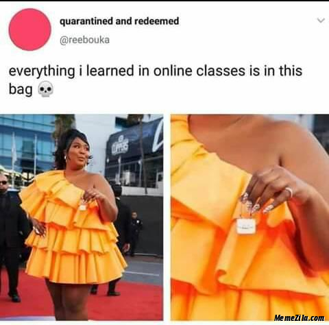 Everything I learn in online classes is in this bag meme