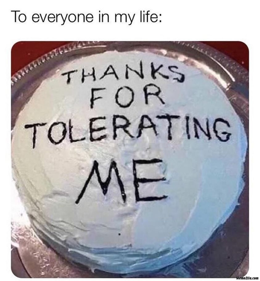 Everything in my life Thanks for tolerating me meme