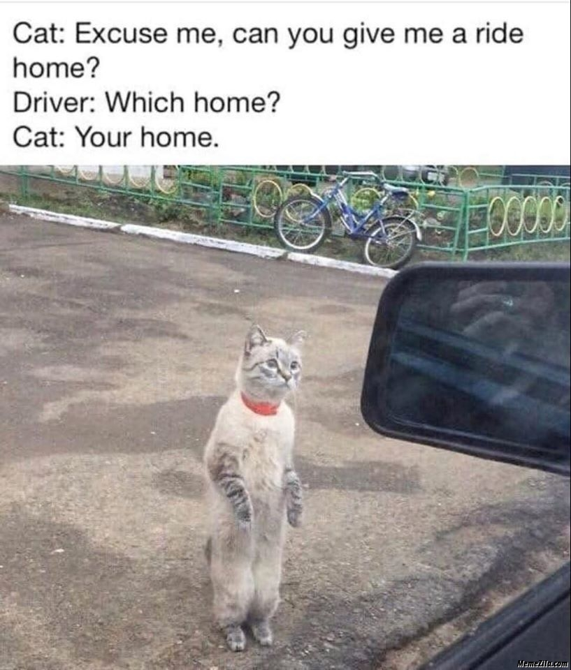 Excuse me can you give me a ride home meme