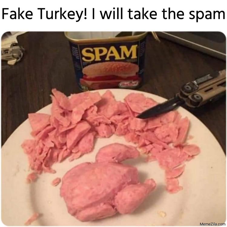 Fake Turkey I will take the spam meme