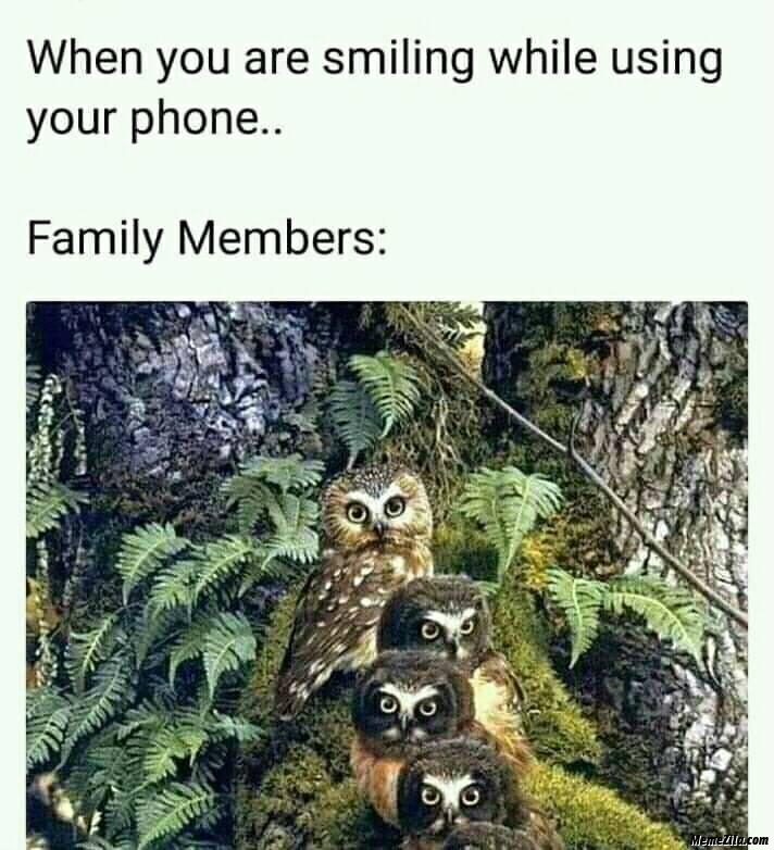 Family members when you are smiling while using your phone meme