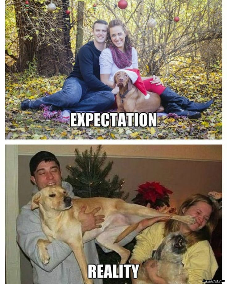 Family photo with dog Expectation vs reality meme
