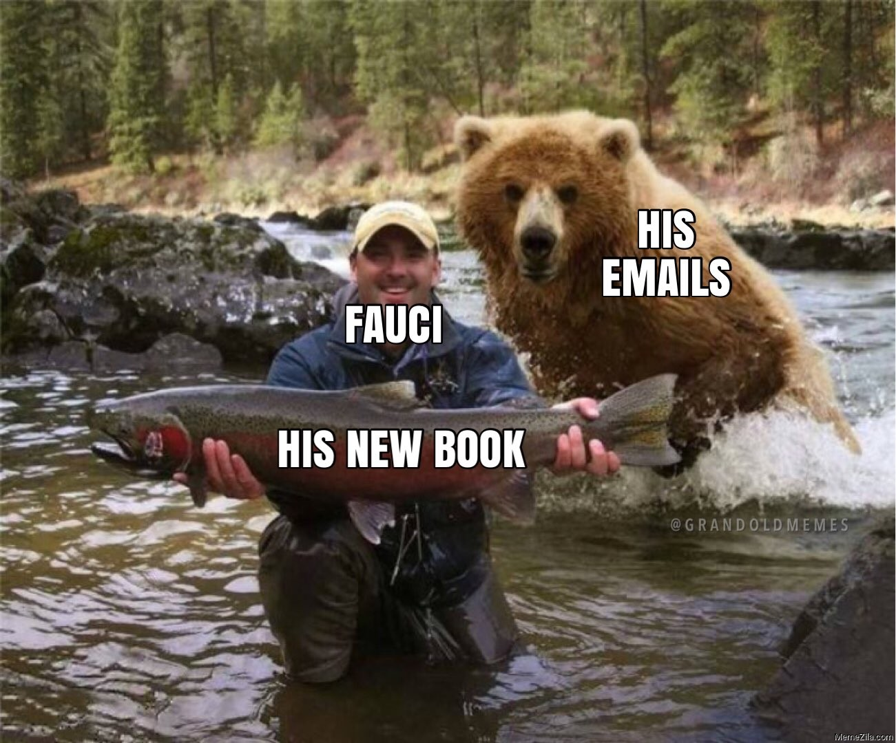Fauci His new book His emails meme