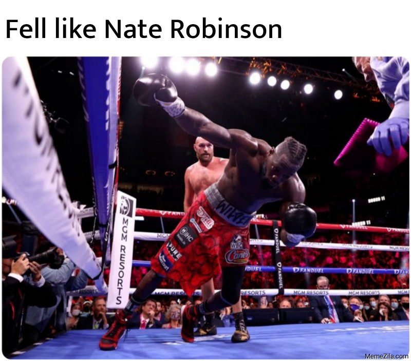 Fell like Nate Robinson meme