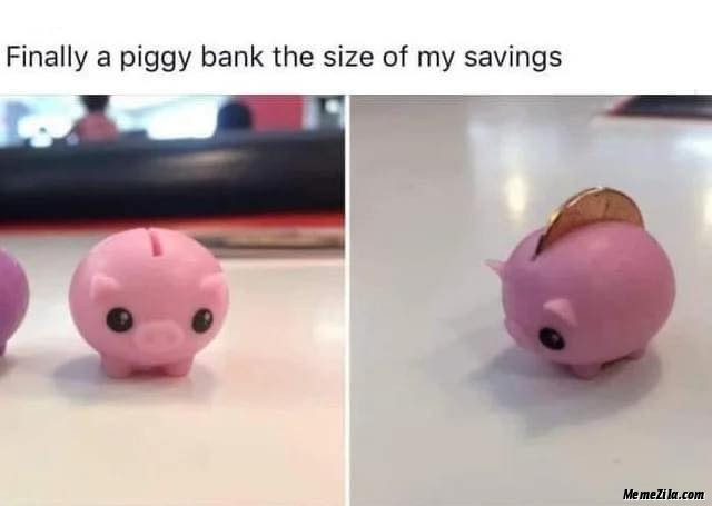 Finally a piggy bank size of the my savings meme