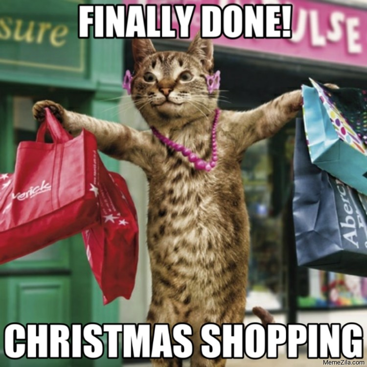 Finally done Christmas shopping cat meme