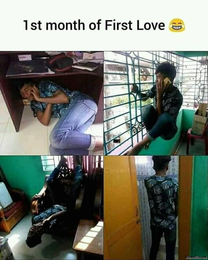 First month of first love meme