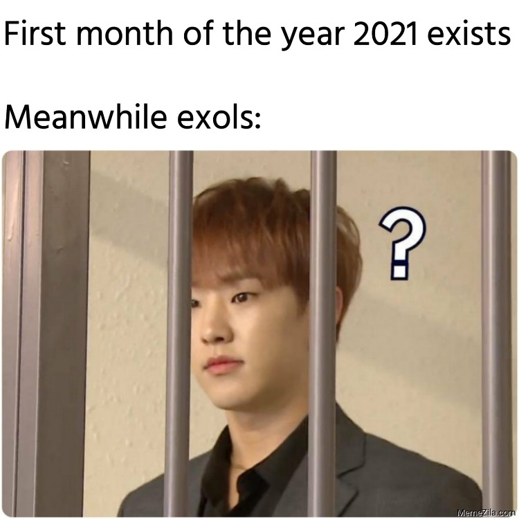 First month of the year 2021 exists Meanwhile exols meme