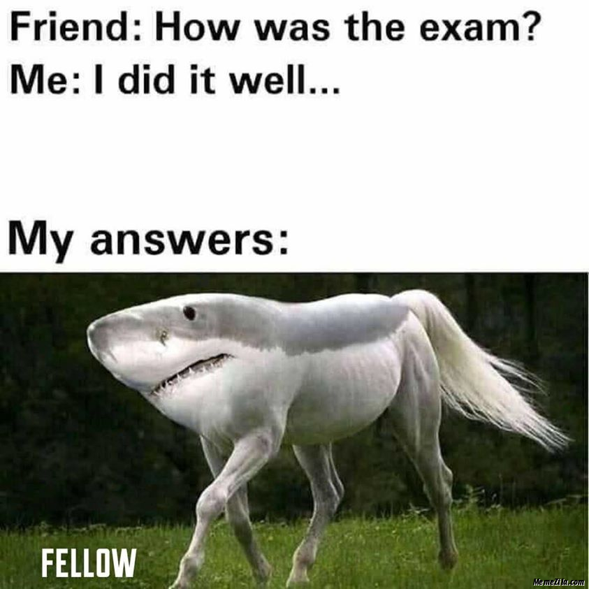 Friend How was the exam Meanwhile my answers meme