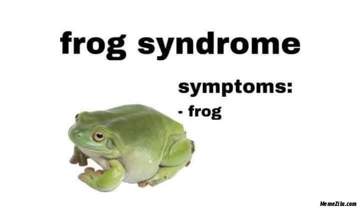 Frog syndrome Symptoms frog meme