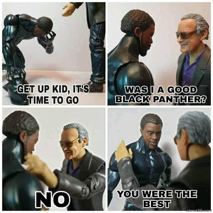 Get up kid its time to go Was I a good black panther No you were the best meme
