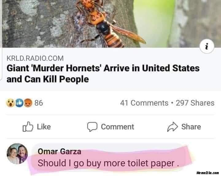 Giant murder hornets arrive in United States and can kill people Should I go buy more toilet paper meme