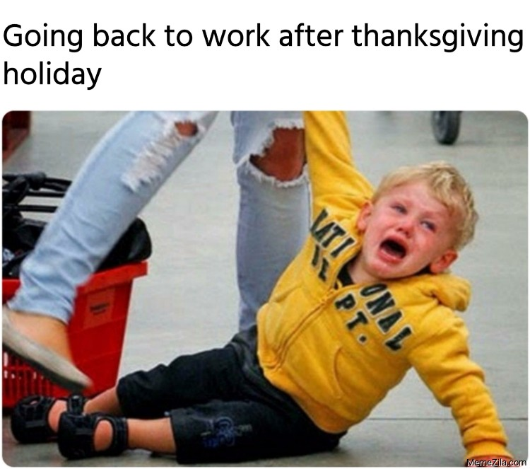 Going back to work after thanksgiving holiday meme