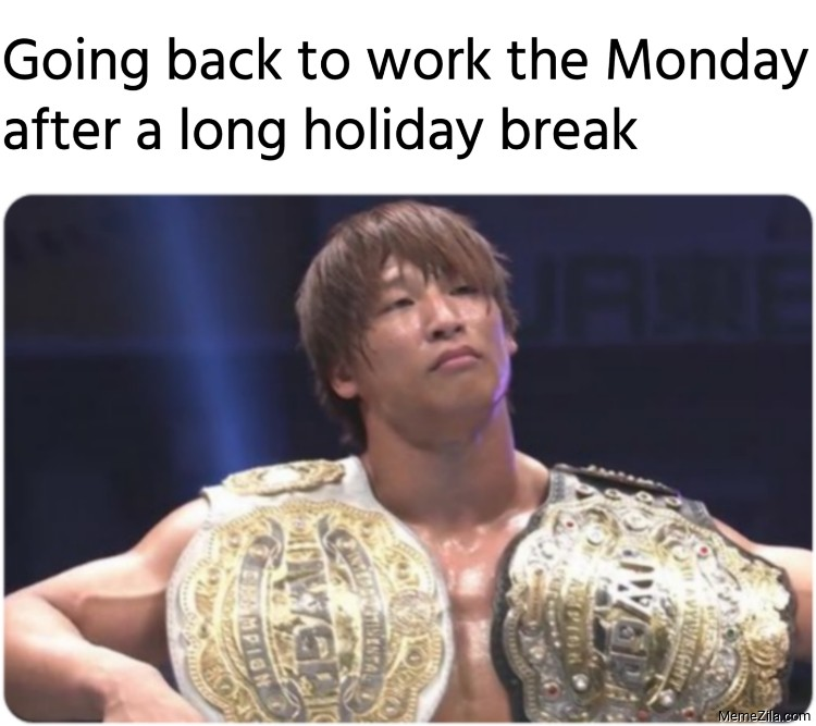 Going back to work the Monday after a long holiday break meme
