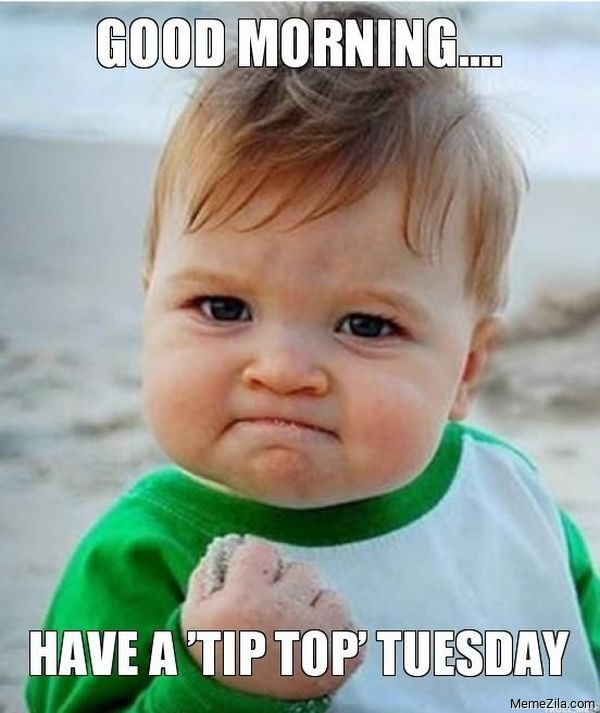 Good morning Have a tip top Tuesday meme