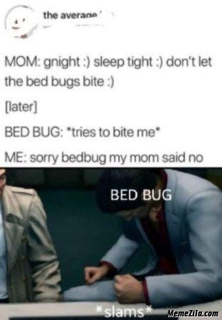 Good night Sleep tight Dont let the bed bugs bite meme