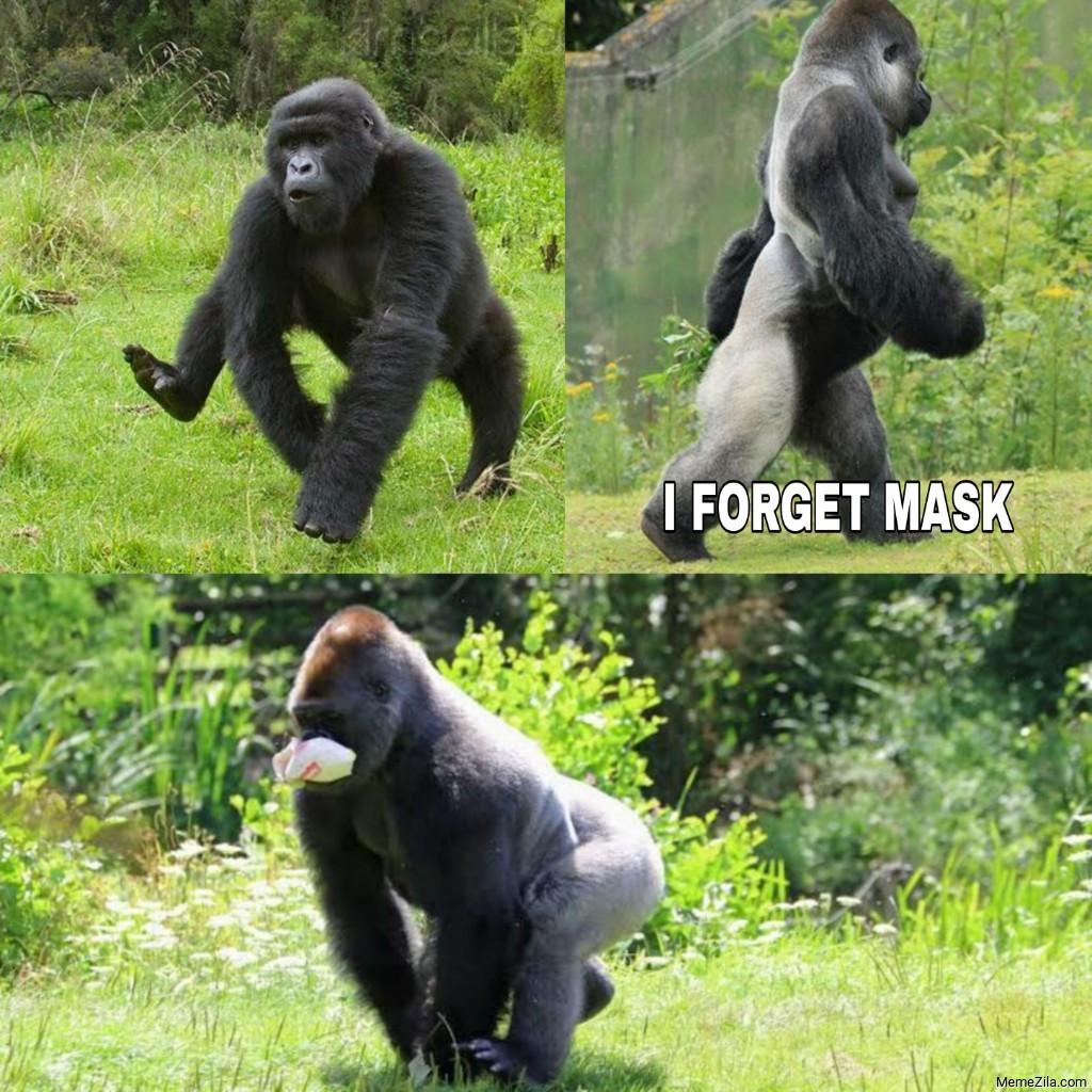Gorilla forgot mask meme
