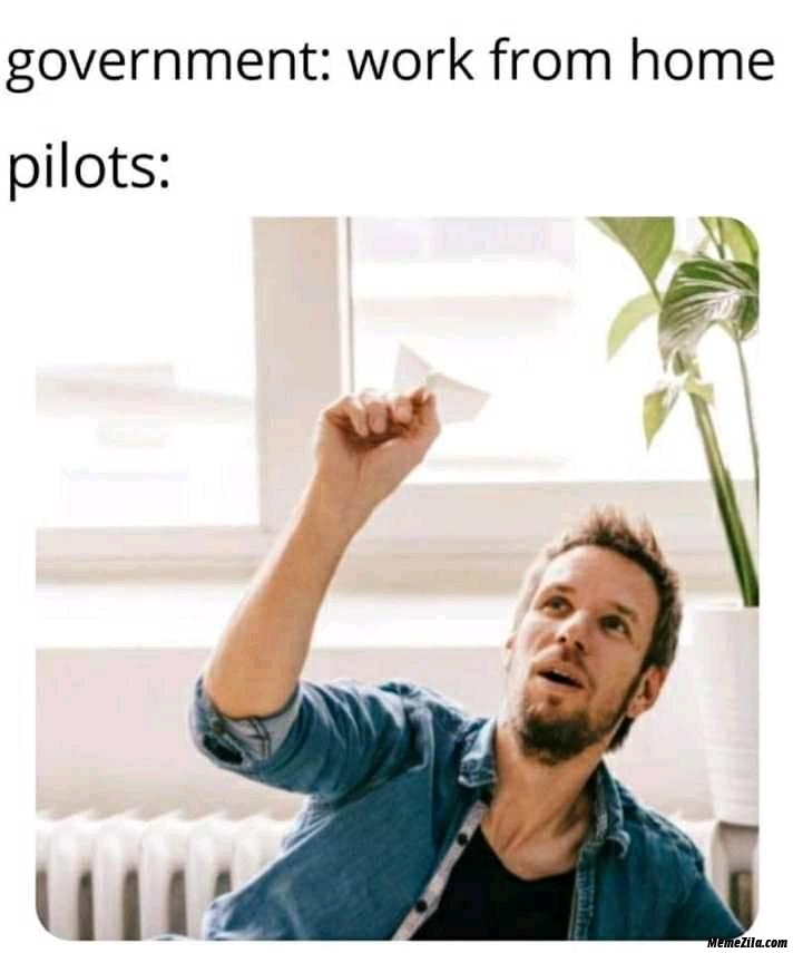 Government work from home meanwhile pilots meme