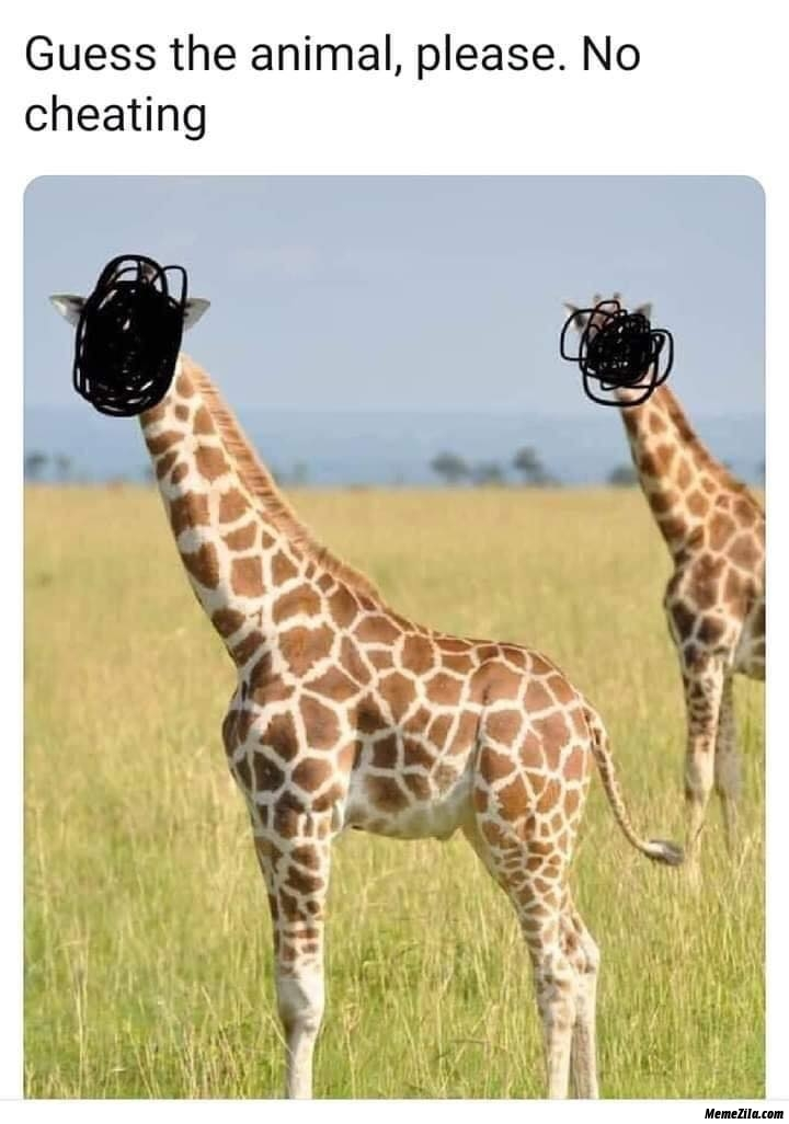 Guess the animal Giraffe meme