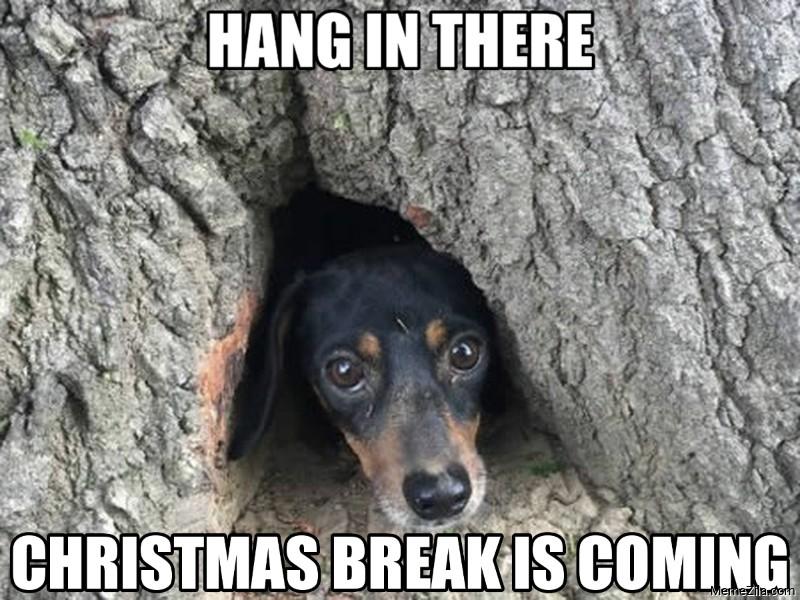 Hang in there Christmas break is coming meme