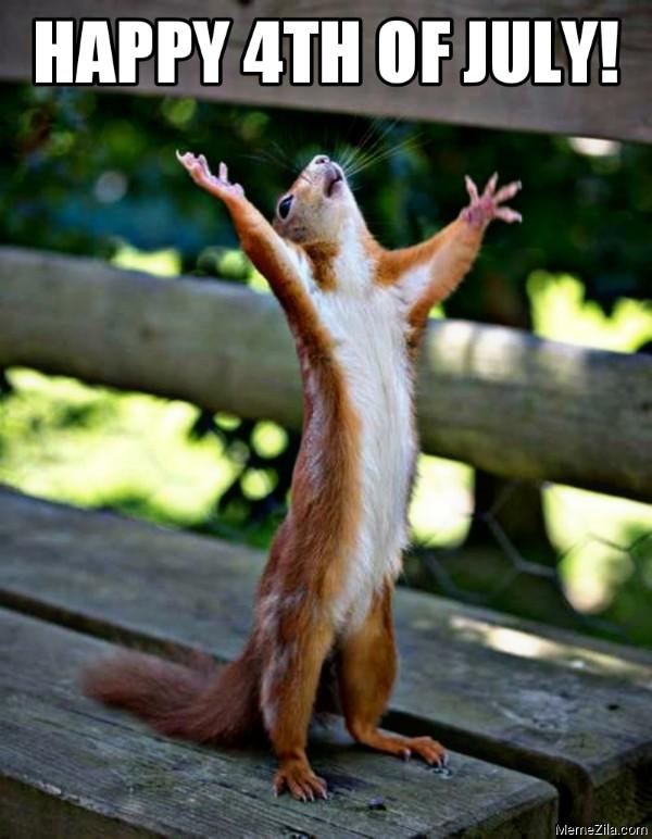 Happy 4th of july squirrel meme