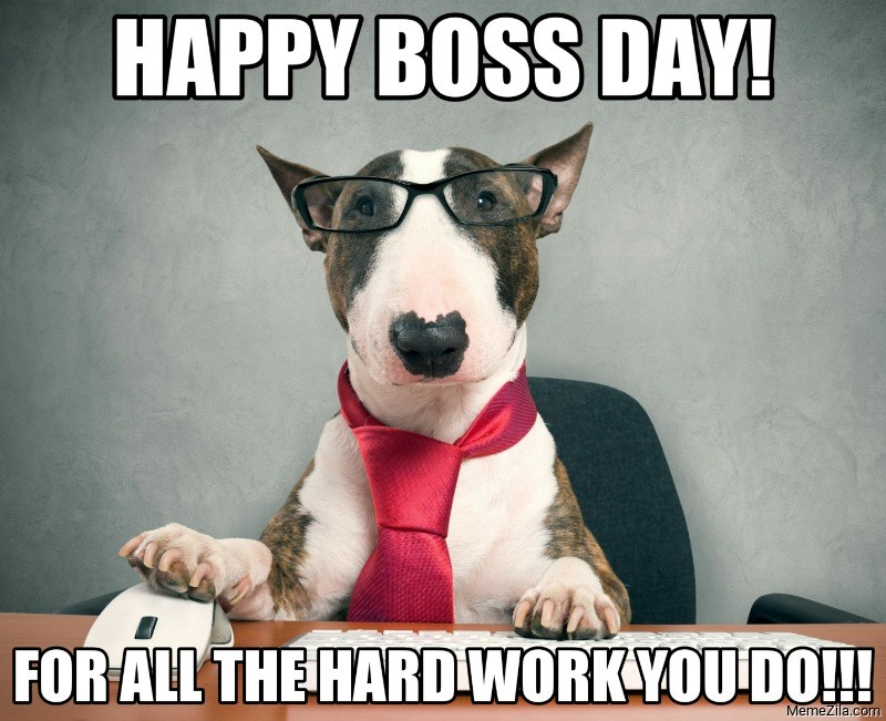 Happy Boss s day for all the hard work you do dog meme