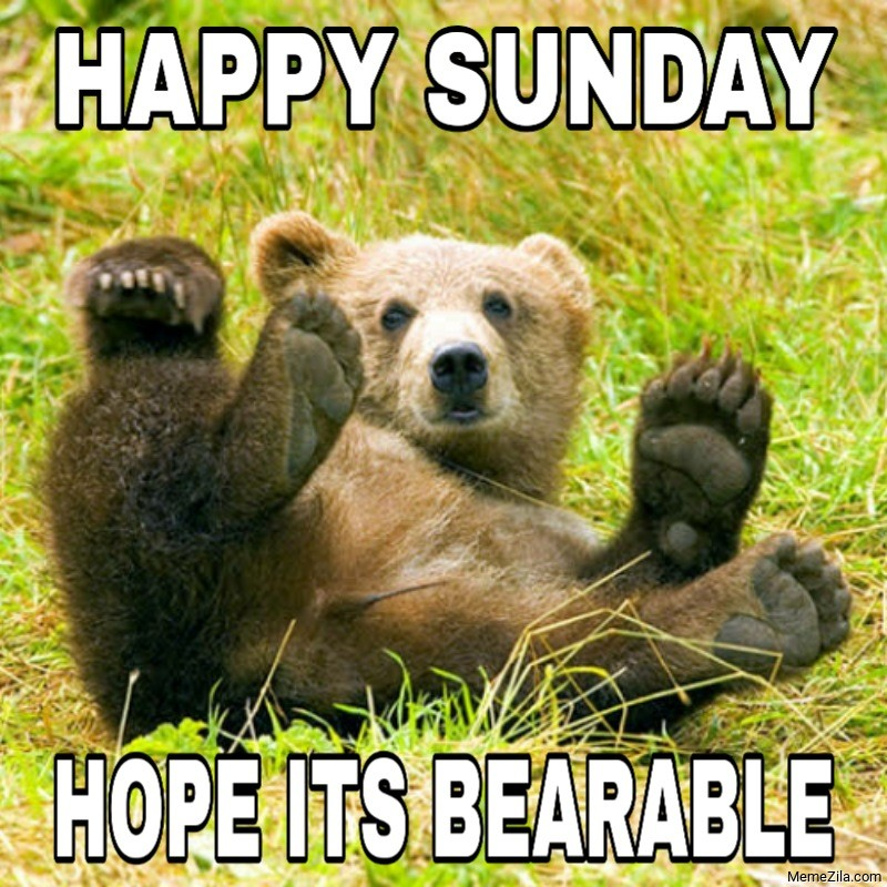 Happy Sunday Hope its bearable meme