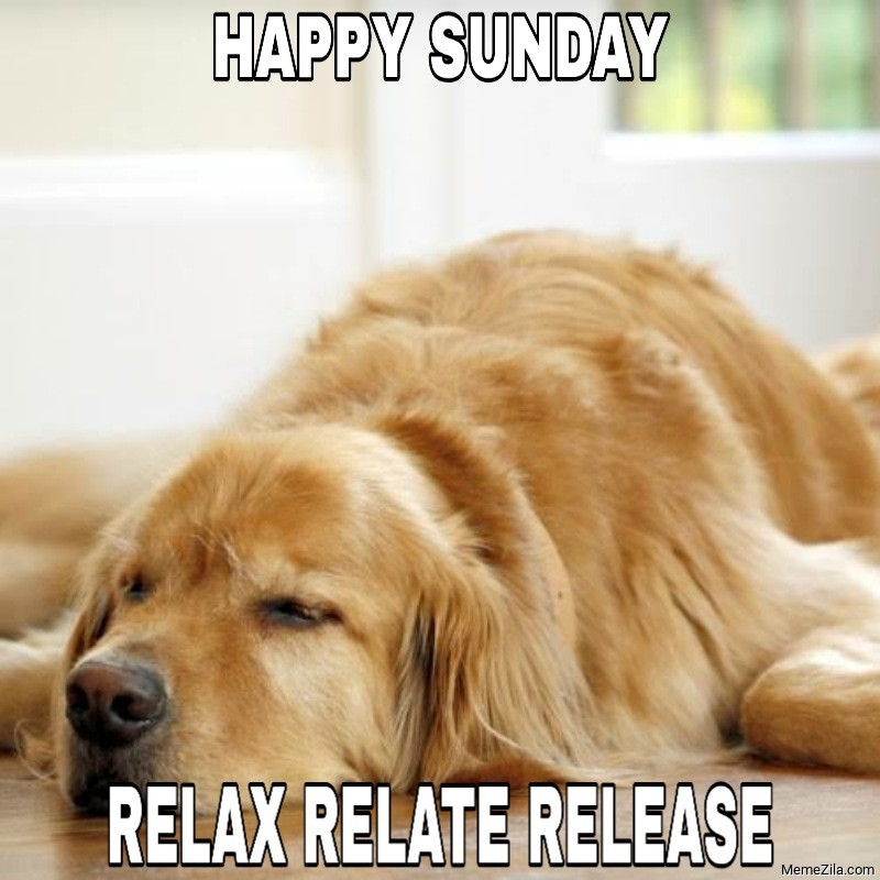 Happy Sunday relax relate release meme