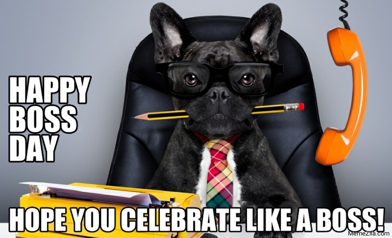 Happy boss day Hope you celebrate like a boss meme