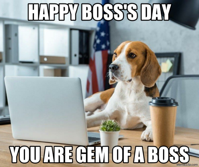 Happy boss day You are gem of a boss dog meme