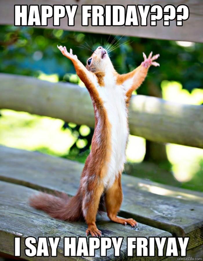 Happy friday I say friyay squirrel meme