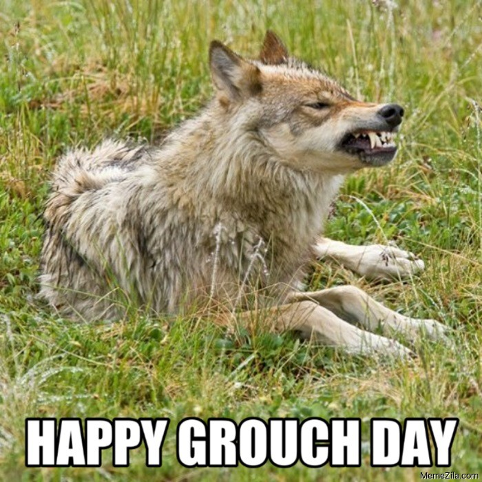 Happy grouch day wolf meme