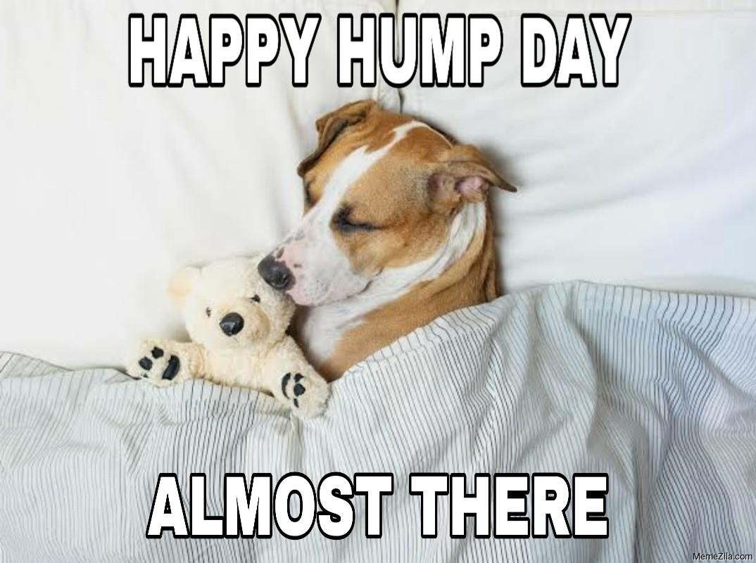 Happy hump day Almost there meme