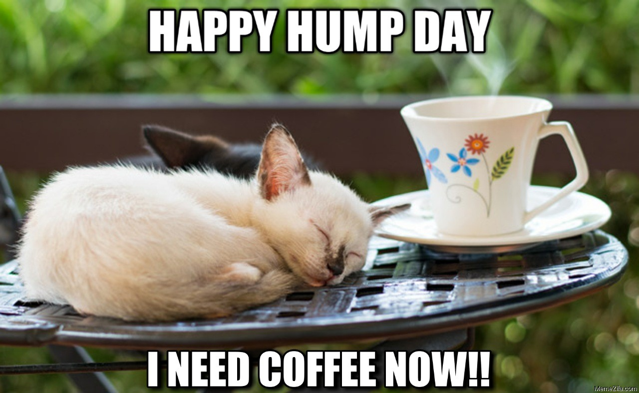 Happy hump day I need coffee now meme