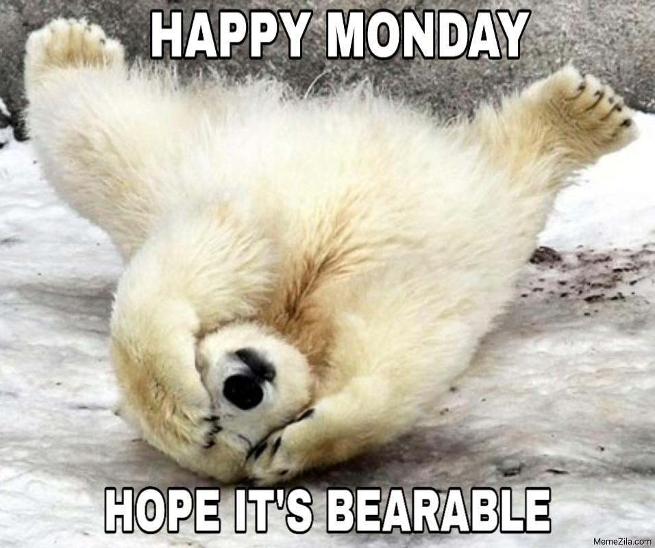 Happy monday Hope its bearable meme