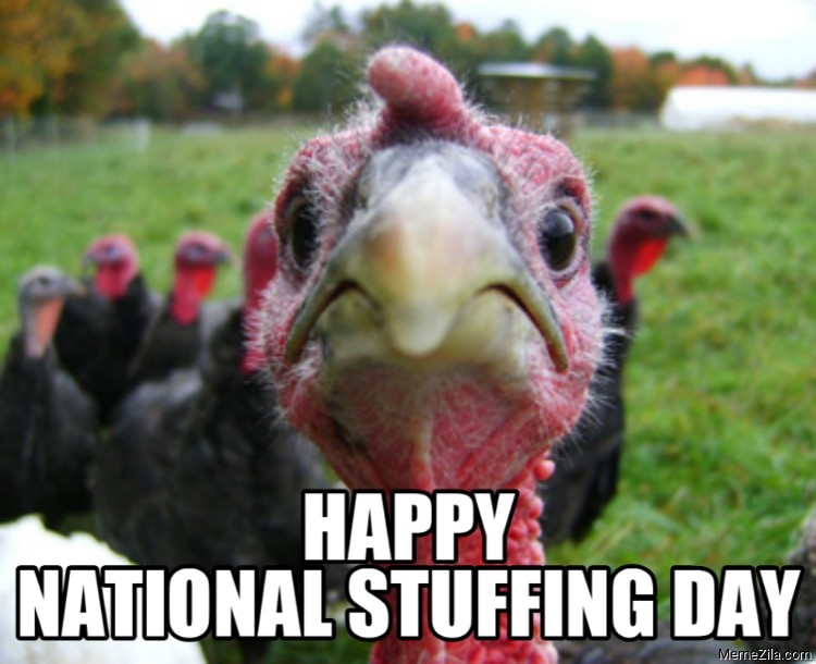 Happy national stuffing day 2020 meme