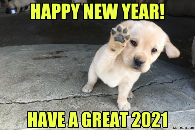 Happy new year Have a great 2021 meme
