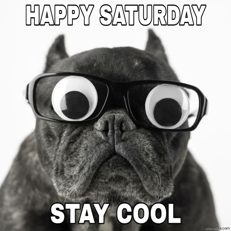Happy saturday Stay cool meme