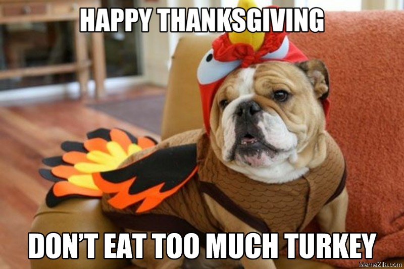 Happy thanksgiving Dont eat too much turkey meme