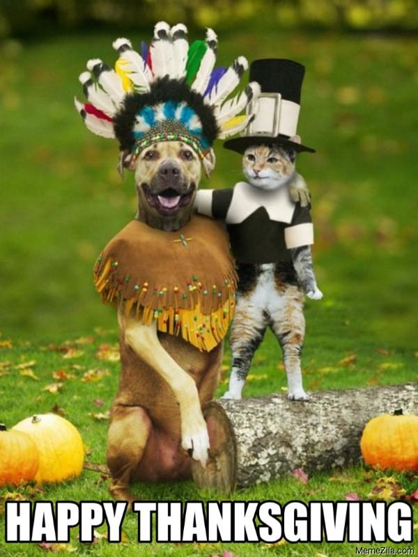 Happy thanksgiving cat dog meme