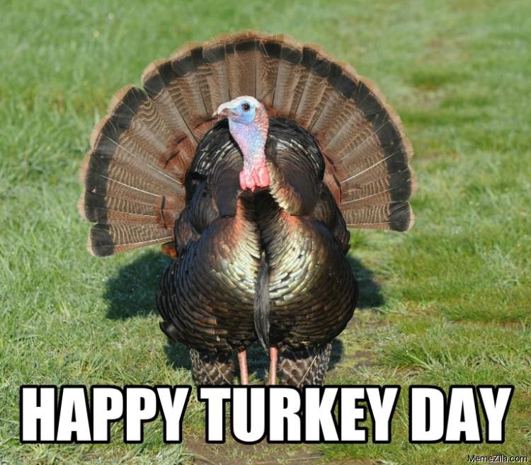Happy turkey day 2020 meme
