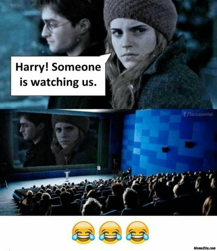 Harry someone is watching us meme
