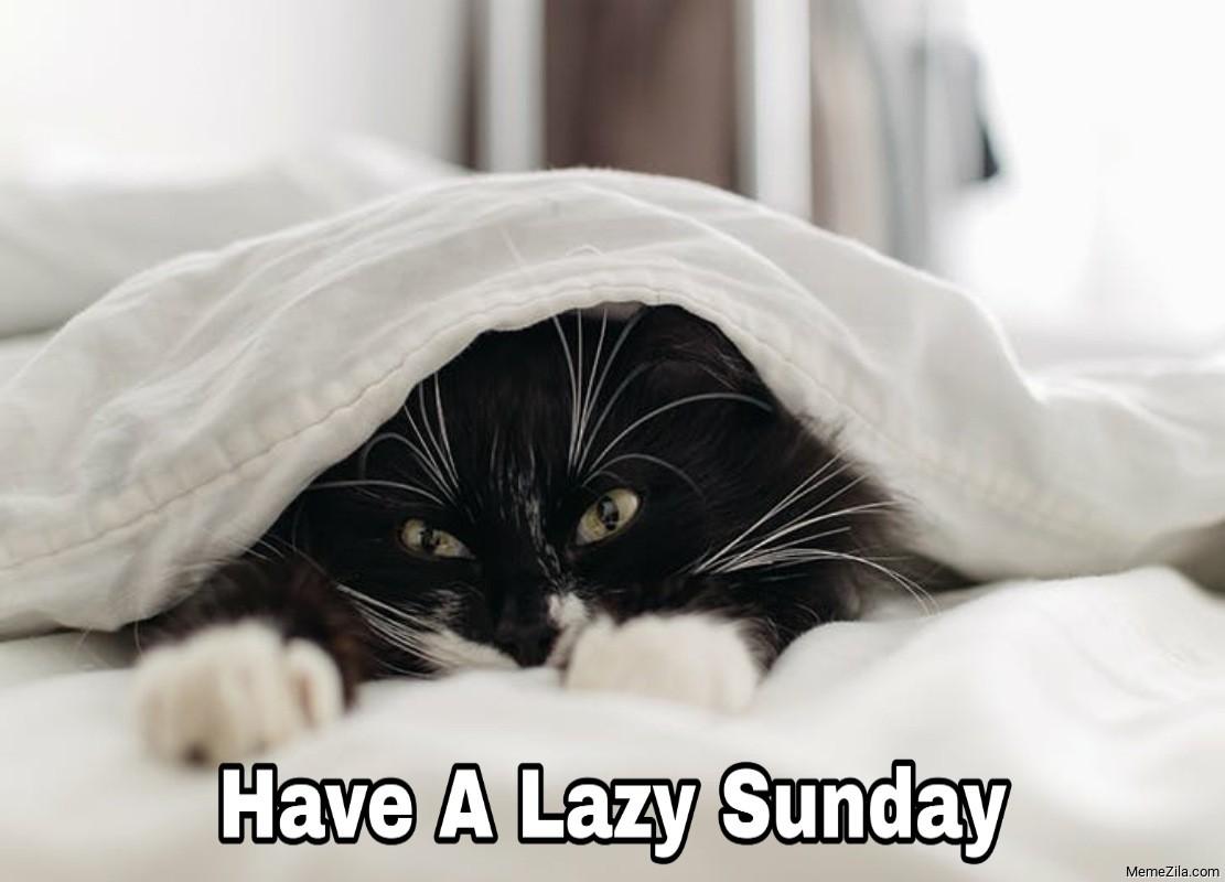Have a lazy Sunday meme