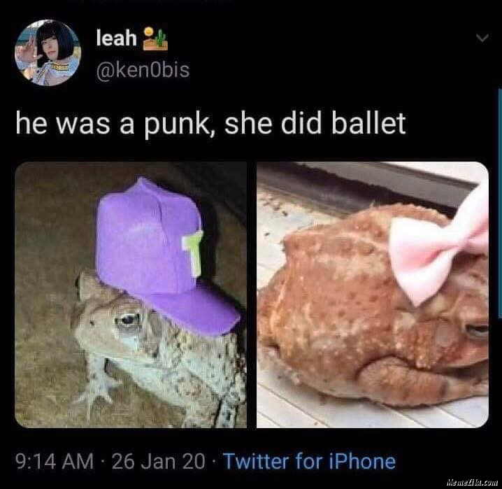 He was a punk She did ballet mean