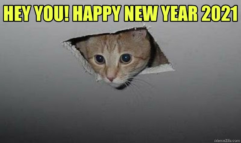 Hey you Happy new year 2021 Ceiling cat meme