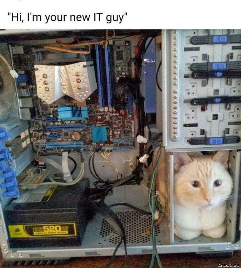 Hi I am your new IT guy meme
